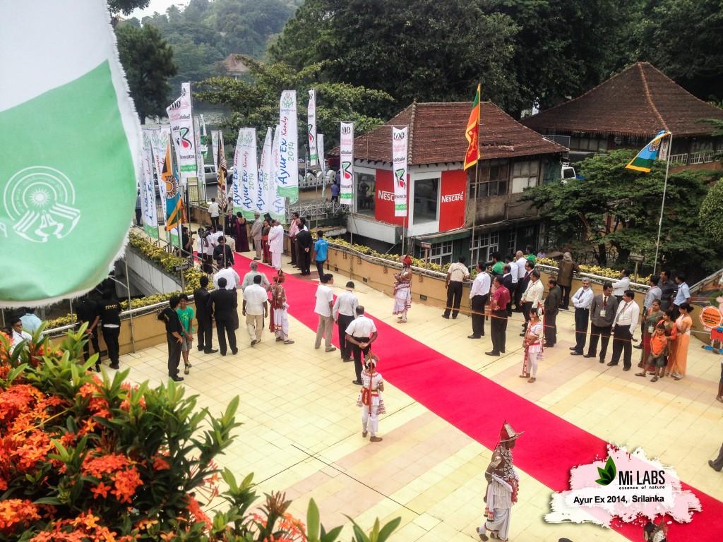 srilanka traditional treatment