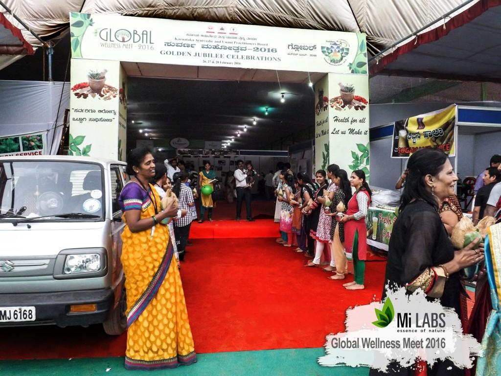 Global wellness expo bangalore 2016