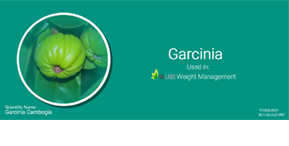 Garcinia – Your partner in Weight loss