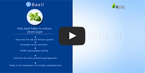 Watch how Basil helps control blood sugar level.
